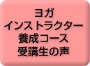 voice_yousei_02